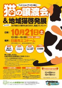 猫の譲渡会(2017年10月21日)