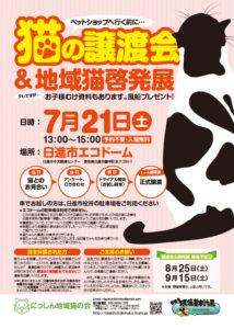 猫の譲渡会(2018年7月21日)