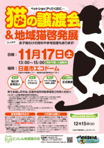 猫の譲渡会(2018年11月17日)