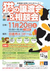 猫の譲渡会&相談会(2021年11月20日)
